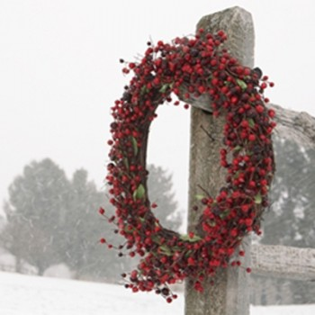 Red Wreath in Winter